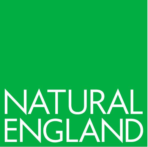 https://droneservicesdorset.co.uk/wp-content/uploads/2021/06/NE-logo.png